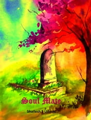 Soul Mate: A Short Romantic Story ebook by Shailesh S Udashi