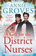 A Gift for the District Nurses (The District Nurses, Book 4) ebook by Annie Groves