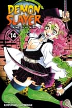 Demon Slayer: Kimetsu no Yaiba, Vol. 14 - The Mu Of Muichiro ebook by Koyoharu Gotouge