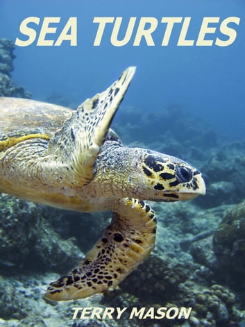 Sea Turtles:Fun Facts & Amazing Pictures - Learn About Sea Turtles - Facts about Animals in the Sea, #6 ebook by Terry Mason