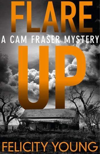 Flare-up - a tense, taut mystery ebook by Felicity Young