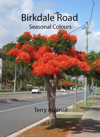 Birkdale Road ebook by Terry Aspinall