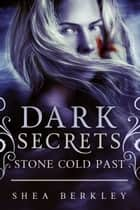 Dark Secrets: Stone Cold Past - A Dark Secrets: Stone Cold Novel ebook by Shea Berkley