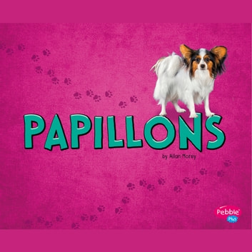 Papillons audiobook by Allan Morey