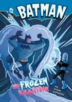 Batman: My Frozen Valentine ebook by Eric Fein,Gregg Schigiel
