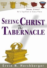 Seeing Christ in the Tabernacle ebook by Ervin N. Hershberger