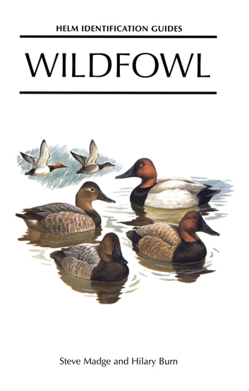 Wildfowl ekitaplar by Steve Madge