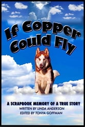 If Copper Could Fly a true story ebook by Linda Anderson