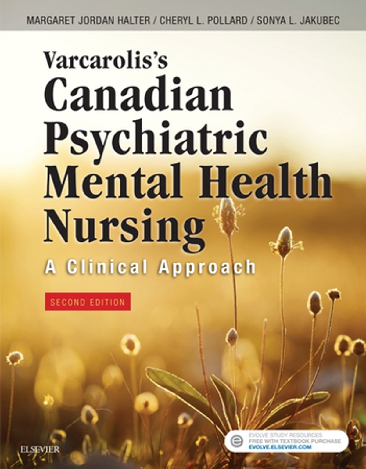 Varcarolis S Canadian Psychiatric Mental Health Nursing Canadian