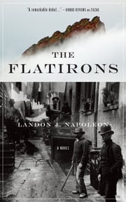 The Flatirons ebook by Landon J. Napoleon