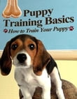 Puppy Training Basics - How to Train Your Puppy