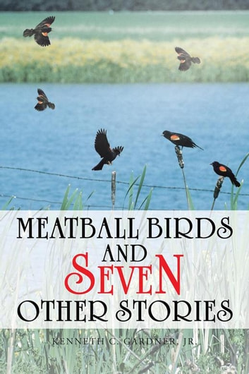Meatball Birds and Seven Other Stories ebook by Kenneth C. Gardner Jr.