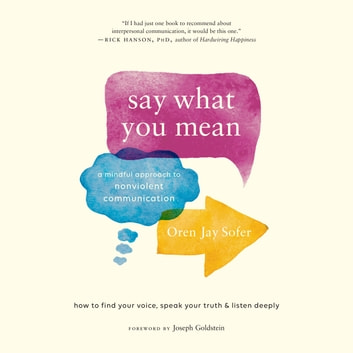 Say What You Mean - A Mindful Approach to Nonviolent Communication audiobook by Oren Jay Sofer