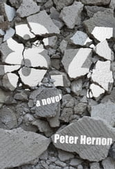 8.4 ebook by Peter Hernon
