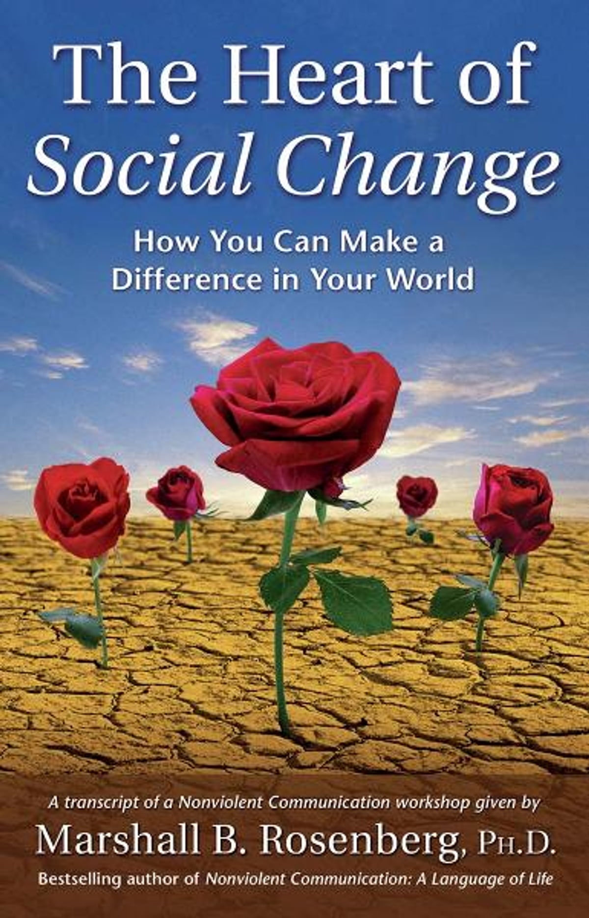 The Heart of Social Change: How to Make a Difference in Your World ...
