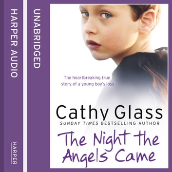 The Night the Angels Came audiobook by Cathy Glass