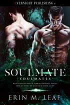 Soulmate ebook by Erin M. Leaf