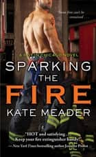 「Sparking the Fire」(Kate Meader著)