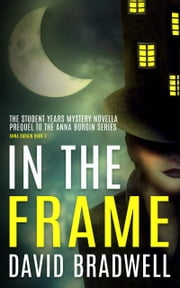 In The Frame - Prequel Mystery Novella - Anna Burgin Book 3 ebook by David Bradwell