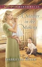 A Mother In The Making ekitaplar by Gabrielle Meyer