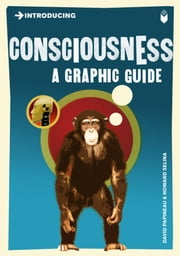 Introducing Consciousness - A Graphic Guide ebook by David Papineau,Howard Selina