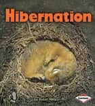 Hibernation ebook by Robin Nelson