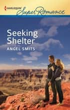 Seeking Shelter ebook by Angel Smits