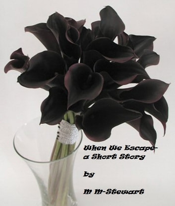 When We Escape- A Short Story ebook by M M-Stewart