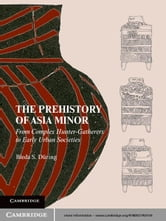 The Prehistory of Asia Minor - From Complex Hunter-Gatherers to Early Urban Societies ebook by Bleda S. Düring