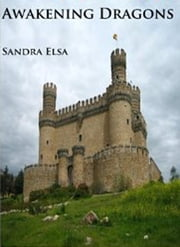 Awakening Dragons ebook by Sandra Elsa