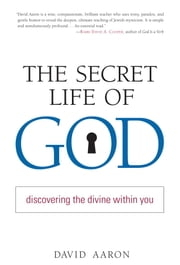 The Secret Life of God - Discovering the Divine within You ebook by Rabbi David Aaron