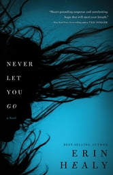 Never Let You Go ebook by Erin Healy