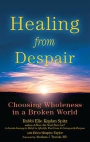 Healing from Despair: Choosing Wholeness in a Broken World ebook by Rabbi Elie Kaplan Spitz, Erica Shapiro Taylor