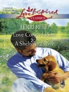 Love Comes Home and A Sheltering Love ebook by Terri Reed