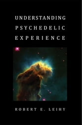 Understanding Psychedelic Experience ebook by Robert E. Leihy
