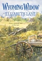 Wyoming Widow (Mills & Boon Historical) ebook by Elizabeth Lane