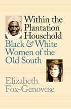 Within the Plantation Household - Black and White Women of the Old South ebook by
