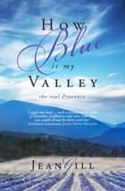 How Blue is my Valley: the real Provence ebook by Jean Gill
