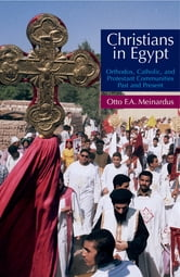 Christians In Egypt - Orthodox, Catholic, and Protestant Communities - Past and Present ebook by Otto F. A. Meinardus