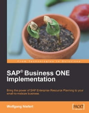 SAP Business ONE Implementation ebook by Wolfgang Niefert