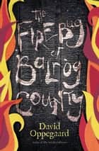 The Firebug of Balrog County ebook by David Oppegaard
