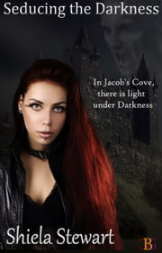 Seducing The Darkness ebook by Shiela Stewart