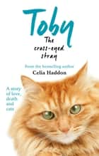 Toby The Cross-Eyed Stray ebook by Celia Haddon