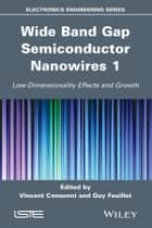 Wide Band Gap Semiconductor Nanowires for Optical Devices - Low-Dimensionality Related Effects and Growth ebook by Guy Feuillet, Vincent Consonni
