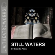 Still Waters audiobook by Claudia Allen