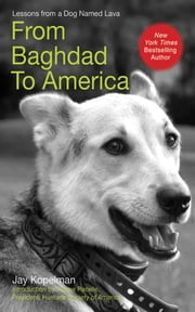 From Baghdad to America - Life Lessons from a Dog Named Lava ebook by Jay Kopelman