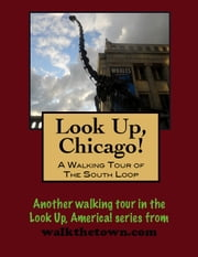 Look Up, Chicago! A Walking Tour of The Loop (South End) ebook by Doug Gelbert