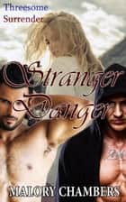 Stranger Danger ebook by Malory Chambers