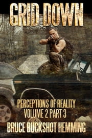 Grid Down - Perceptions of Reality Volume 2 Part 3 ebook by Bruce Buckshot Hemming