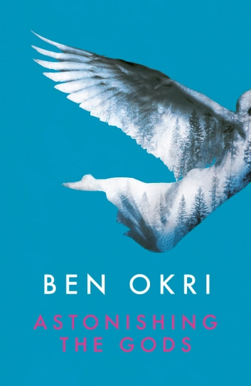 Astonishing the Gods ebook by Ben Okri